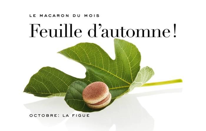 Pierre Marcolini - Macaron d'Octobre - Figue