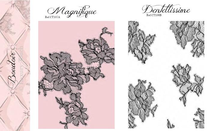 Boudoir 4 Magnifique 5 Dentelissime
