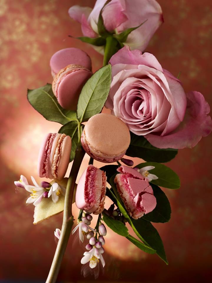 Macaron Fleur d'Oranger, rose et gingembre - Pierre Hermé