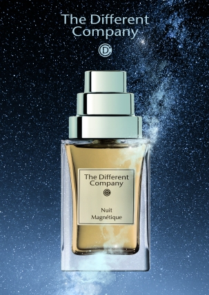 The Different Company_Nuit magnétique_ambiance