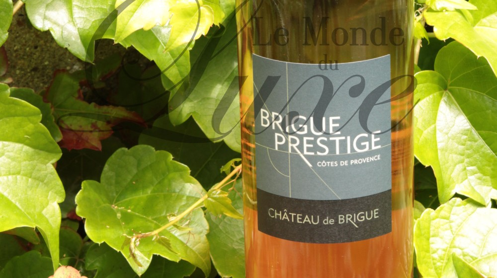 face-Brigue-prestige-2013